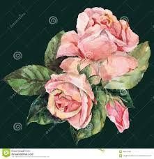 Znalezione obrazy dla zapytania róże akwarela