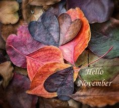 This week's color palette brings you all the glory of fall leaves as we say goodbye to autumn and hello to winter. Leave In, November Images, November Pictures, November Quotes, Images Google, November Wallpaper, Heart In Nature, Heart Art, Hello November