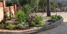 Resultado de imagen para pinos decorativos para jardin