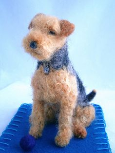welsh terrier by adore62, via Flickr