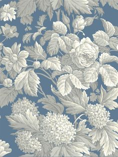 KC1845 - Wallpaper | French Dressing | AmericanBlinds.com