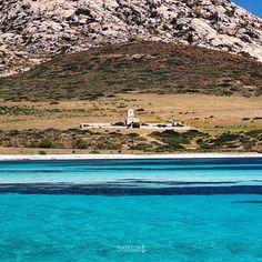 I contrasti di un'isola straordinaria: granito rosa, euphorbia rossa, una distesa di mare da far invidia agli atolli del Pacifico e nel bel mezzo un piccolo cimitero abbandonato. #Asinara #lanuovasardegna