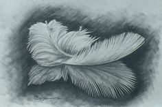Charcoal Feather Drawing Still life Feather by WildRunningArt, $95.74
