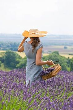 ❀ Flower Maiden Fantasy ❀ beautiful photography of women and flowers - Yorkshire Lavender, England