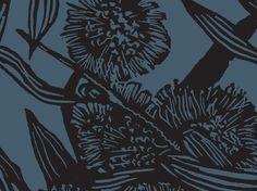 Hakea (Shadow & Academy) | Jude Taylor | Wildflower Art, Design & Fabric | Swan Valley, Perth, WESTERN AUSTRALIA