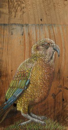 Giclée print of New Zealand Kea parrot on rustic by KanukaGlen