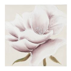 Wall Art - Prints & Visual Artwork | The Range Wall Art Prints, Poster Prints, Neutral Colors, Colours, Flower Canvas, Picture Frames, Hand Painted, Floral, Artwork