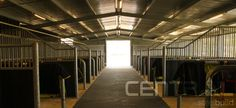 14 Clever Things Every Horse Owner Should Know About - Central Steel Build
