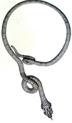 Diamond and black gold snake necklace, 2002  Solange Azagury-Partridge for Boucheron http://designmuseum.org/design/solange-azagury-partridge