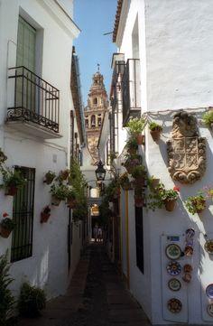 Cordoba, Spain in one year!