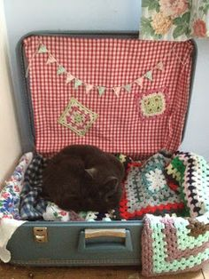 sidmouth poppy suitcase cat  bed