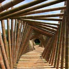 Amazing bamboo garden pathway arbor