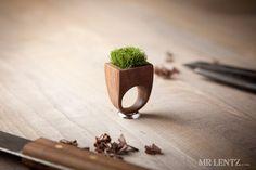 This cracks me up! Wood Grass Planter Ring, Garden Ring, Plant Ring 009 via Etsy