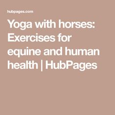 Yoga with horses: Exercises for equine and human health | HubPages