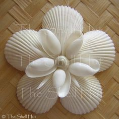 Beach Shells christmas ornaments | Seashell Snowflake Christmas Ornament Beach Star Sea Shells Flower ...