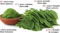 Moringa: Breaking Study: This Green Herb Could Be The Cure To 5 Different Types Of Cancer Including Ovarian, Liver, Lung & Melanoma Natural Cancer Cures, Natural Cures, Natural Health, Liver Cancer, What Is Moringa, Different Types Of Cancer, Miracle Tree, Cancer Fighting Foods, Moringa Oleifera