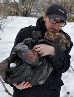 ♥ VICTORY! ♥ Italian petition: PROTEGGIAMO ANDREA CISTERNINO | Andrea Cisternino, the photographer and activist, for years was documenting the massacre of strays in Ukraine. Recently, he published how dog hunters are killing dogs and petrol bombs thrown on his dog shelter Rifugio Italia, near Kiev, was their revenge. Cisternino life is in danger, before he was insulted and beaten, but now there are death threats. http://firmiamo.it/proteggiamo-andrea-cisternino-1