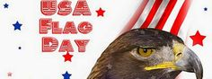 flag day observed 2015