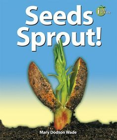 This easy-to-read science book fills a need for nonfiction science readers while entertaining students with stunning color photos and fascinating facts. Learn all about seeds with this colorful, easy-to-read book. What is in a seed? How do seeds travel? Learn the answers to these questions and more, and find out if soaking a seed makes it sprout faster using the included experiment.