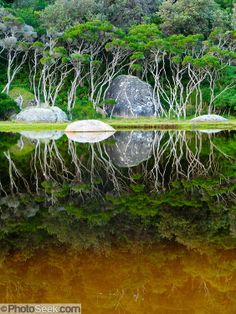The Tidal River at Wilson's Promontory National Park in the Gippsland region of Victoria, Australia by Tom Dempsey