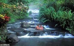 Tabacon Grand Spa and Thermal Resort.  Arenal Volcano, Costa Rica.  Don't waste money on a big room.  You'll be at the hot springs the entire time.