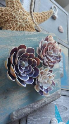 Sea Crafts, Nature Crafts, Crafts To Do, Seashell Art, Seashell Crafts, Crafts With Seashells, Seashell Decorations, Decorating With Seashells, Valentines Flowers