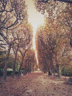 autunno in Parigi