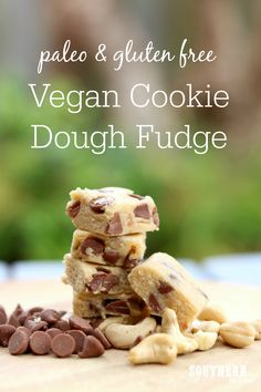 Recipe: Healthy Vegan Cookie Dough Fudge (Paleo too!) Easy No Bake Vegan Cookie Dough Fudge Recipe – healthy, gluten free, paleo, sugar free, clean eating recipe Recipe: Healthy Vegan Cookie Dough Fudge (Paleo too! Healthy Vegan Cookies, Vegan Gluten Free Cookies, Healthy Dessert Recipes, Clean Eating Recipes, Raw Food Recipes, Desserts, Healthy Snacks, Cookie Dough Fudge, No Bake Cookie Dough
