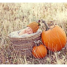 New Ideas For Baby Pictures October Newborn Photos Newborn Poses, Newborn Shoot, Newborn Baby Photography, Baby Boy Newborn, Newborns, Newborn Care, Fall Newborn Pictures, Fall Baby Pictures, Fall Photos