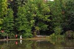 Atatürk Arboretumu by Oguz Buktel on 500px