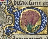 Missale ad usum ecclesiae Aquensis. Date d'édition : 1466 Type : manuscrit Langue : latin http://gallica.bnf.fr/ark:/12148/btv1b6000779g/f51.item.r=Missale