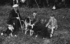 Llanidloes annual sheep sale  Teitl Cymraeg/Welsh title: Arwerthiant defaid blynyddol Llanidloes.  Ffotograffydd/Photographer: Geoff Charles (1909-2002)  Dyddiad/Date: 16/03/1939