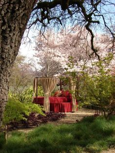 Red linens make this secluded woodland spot super romantic while flowy curtains on the canopy bed provide privacy.