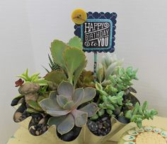 Happy Birthday succulents in a vintage tin mold