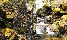 Desde Pelayos de la Presa: Rocas tras un invierno húmedo. Iruelas