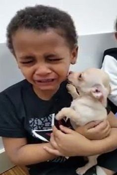 Little Boy Is Crying By Happiness Because His Puppy Is Very Cute (VIDEO) #happiness #little #boy #puppy #dog #pets #animals