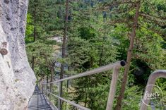 Stiege am 1. Wiener Wasserleitungsweg Outdoor Furniture, Outdoor Decor, Plants, Road Trip Destinations, Environment, Hiking, Landscape, Flora, Plant