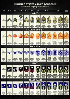 All Military Ranks, Navy Officer Ranks, Navy Ranks, Marine Corps Ranks, Military Quotes, Military Insignia, Navy Military, Military Life, Military History