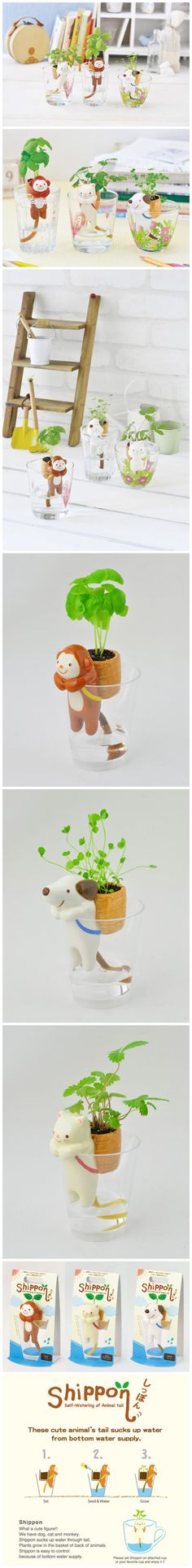 Self-watering of animals tail