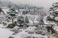 Shirakawago Snow November 6