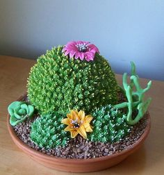 Cactus cake--This is probably one of the coolest cakes I've ever seen!
