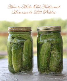 Old Fashioned Refrigerator Dill Pickles #Recipe by Amy Locurto at  LivingLocurto.com
