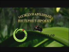 Вебинар. День рождения проекта Онлайн-Карьера.РФ