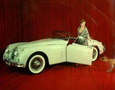 The C-Type Jaguar