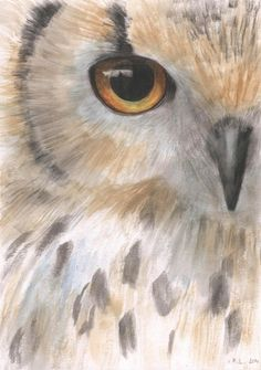 Owl painting. by:-Madara