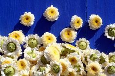 Chamomile Essential Oil Benefits. Used in a Skin Spray, Relaxing Bath Treatment and a Skin Treatment.
