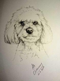 Título: Winnie - Dibujo a Lapiz (47x32cm) - San Luis, Argentina - Autora: Alejandra Etcheverry