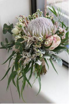 Bouquet De Protea, Protea Flower, Floral Bouquets, Eucalyptus Bouquet, Protea Wedding, Wedding Bouquets, Wedding Flowers, Floral Arrangements, Winter Weddings