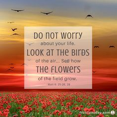 Therefore I tell you, do not worry about your life. Matthew 6:25