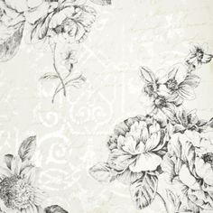 Rose wallpaper pattern number ER8145 from the book Waverly Cottage from Steve's Wallpaper Collection. #wallpaperpattern #rosewallpaper